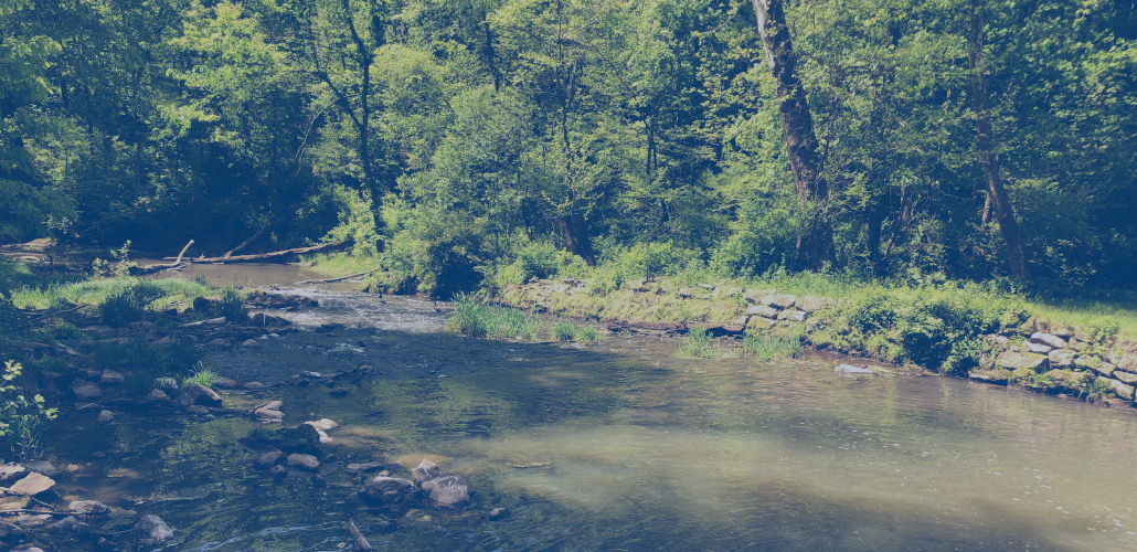 Stream Crossing Protection plan for a natural gas pipeline repair